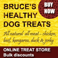 Healthy Dog Treats Shop